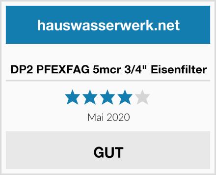 "DP2 PFEXFAG 5mcr 3/4"" Eisenfilter Test"