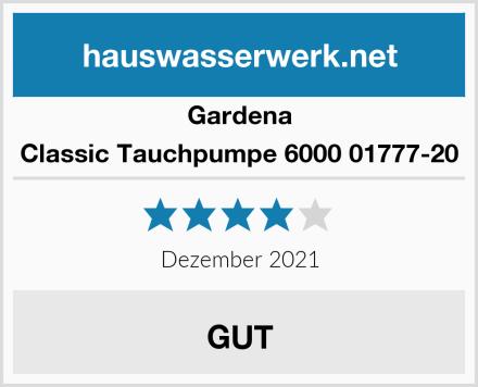 Gardena Classic Tauchpumpe 6000 01777-20 Test