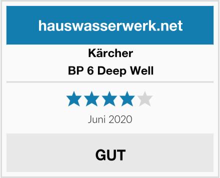 Kärcher BP 6 Deep Well Test