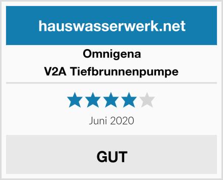 Omnigena V2A Tiefbrunnenpumpe Test