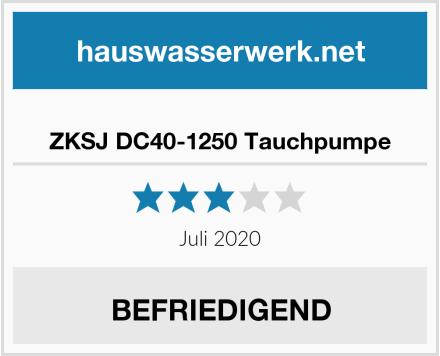 ZKSJ DC40-1250 Tauchpumpe Test