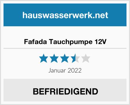 Fafada Tauchpumpe 12V Test