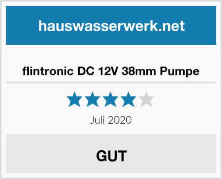 flintronic DC 12V 38mm Pumpe Test