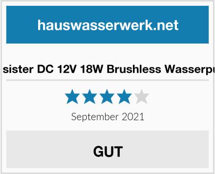 town sister DC 12V 18W Brushless Wasserpumpe Test