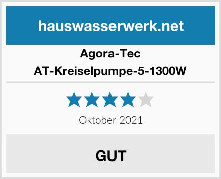 Agora-Tec AT-Kreiselpumpe-5-1300W Test