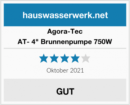 "Agora-Tec AT- 4"" Brunnenpumpe 750W Test"