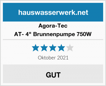 "Agora-Tec AT- 4"" Brunnenpumpe 750W Test"