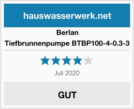 Berlan Tiefbrunnenpumpe BTBP100-4-0.3-3 Test
