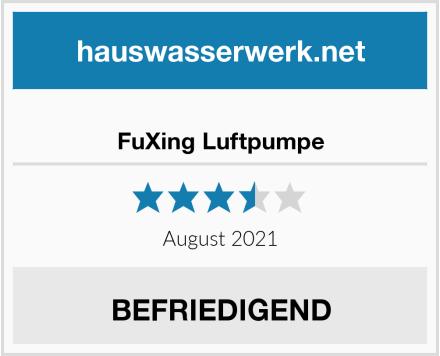 FuXing Luftpumpe Test
