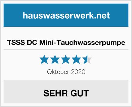 TSSS DC Mini-Tauchwasserpumpe Test