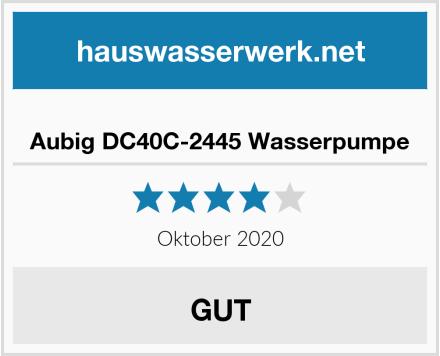 Aubig DC40C-2445 Wasserpumpe Test