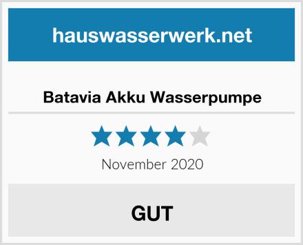 Batavia Akku Wasserpumpe Test