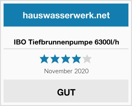 IBO Tiefbrunnenpumpe 6300l/h Test