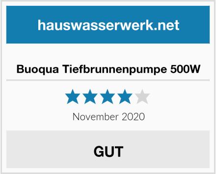 Buoqua Tiefbrunnenpumpe 500W Test