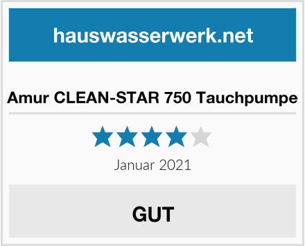 Amur CLEAN-STAR 750 Tauchpumpe Test