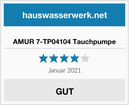 AMUR 7-TP04104 Tauchpumpe Test